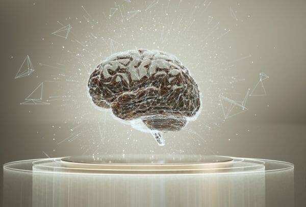 私たちの身体に指令を出す脳のイメージ