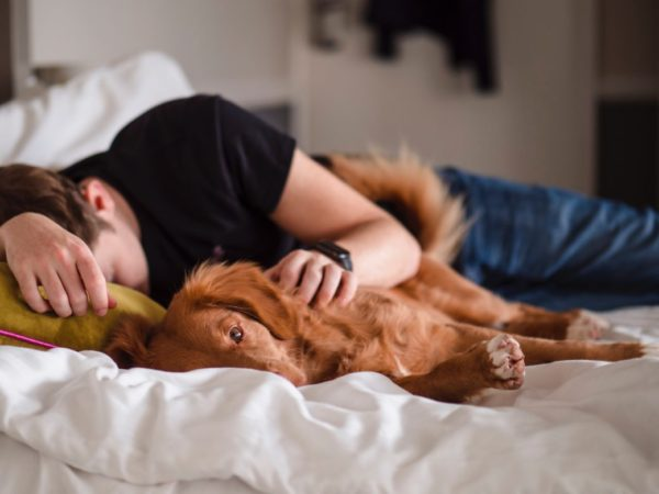 貧血が原因の体調不良でベッドに横になっている人のイメージ