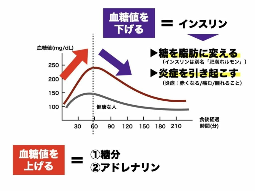 糖質を摂取して急激に上がった血糖値を下げるためにインスリンが分泌されることを分かりやすくグラフにまとめた画像